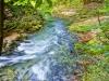 img_1369-Slovenia -vandløb i skoven,Triglav
